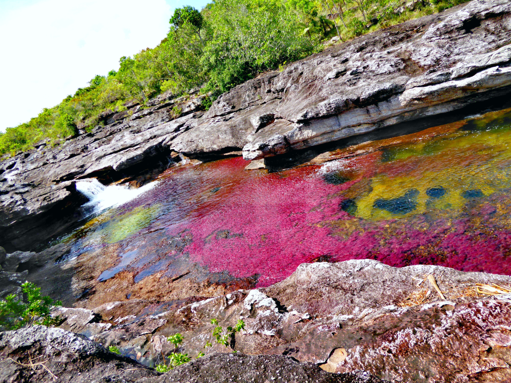 La rivière des cristaux- Colombie