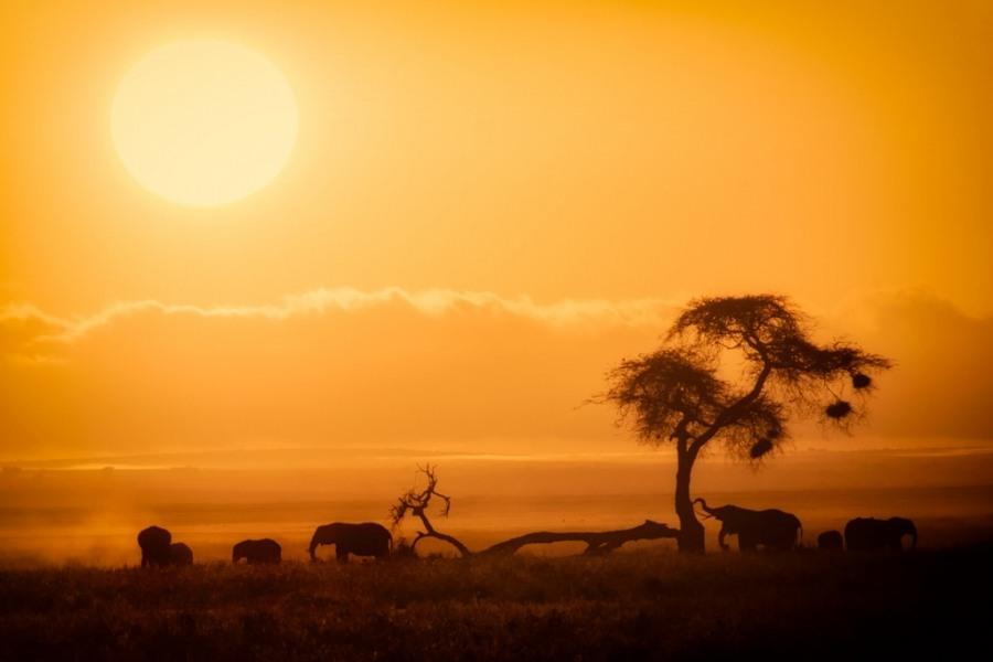 Coucher de soleil au Kenya